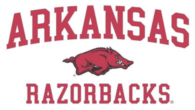 Photo of Razorbacks expect great upcoming season with Connor Noland
